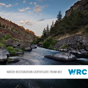 Personal BEF Water Restoration Certificates®